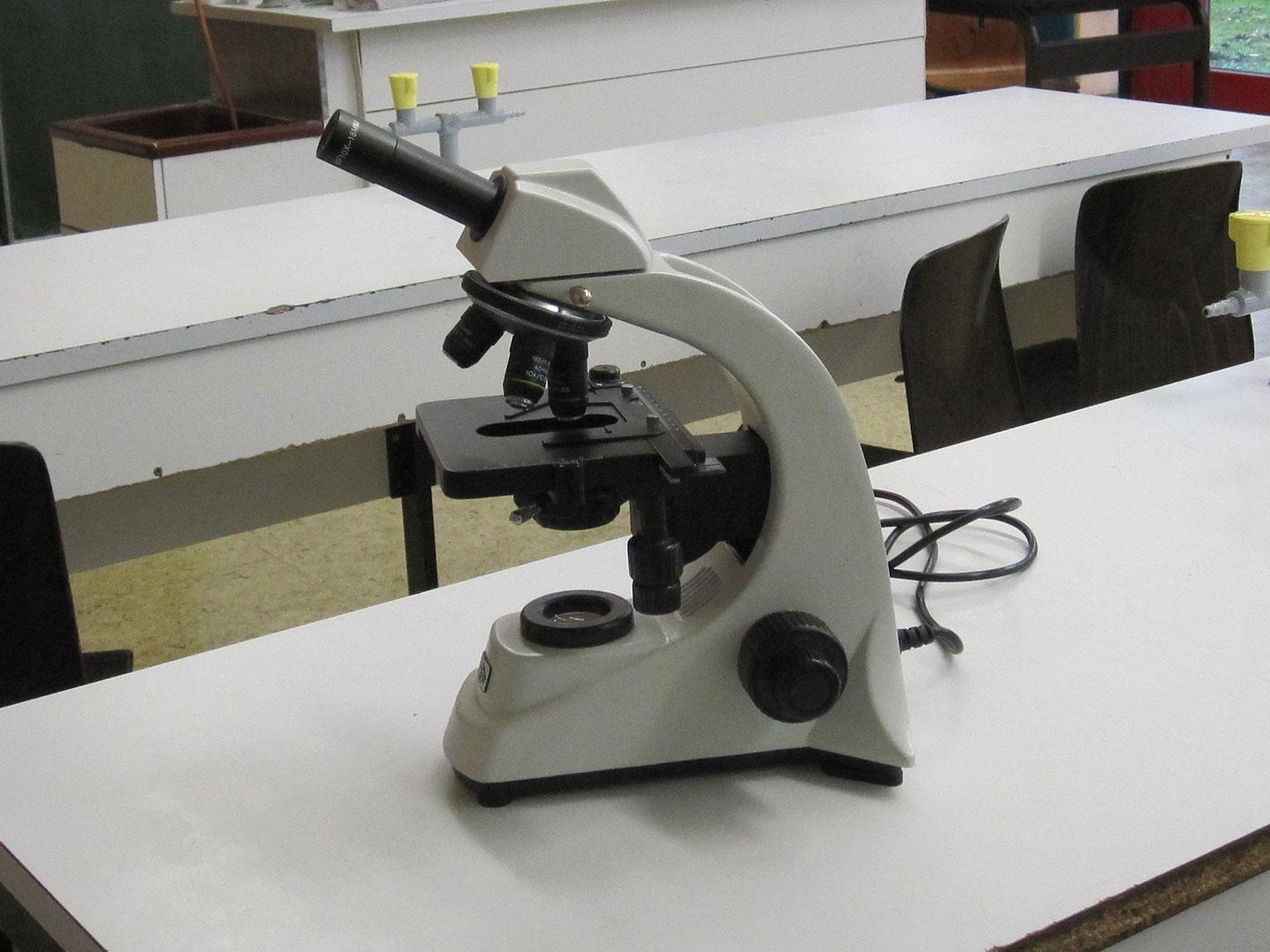 Kinder die mikroskop studing biologie chemie im schullabor